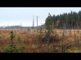 7 Дикая природа Скандинавии - о съемках фильма